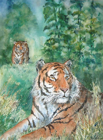 Tiger Spotted - 15 ½ x 11 ½ inches - Watercolour and gouache